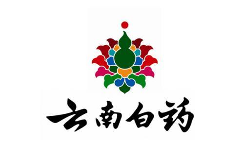 北京qy288.vip千亿国际公司客户案例